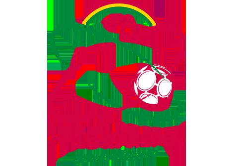 ZULTE-WREGEM
